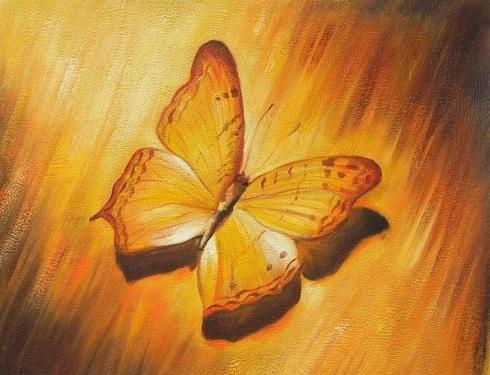 farfalla gialla dipinta a olio su tela dim.50x60 della Galleria Dipintinmovimento disponibile in vendita online